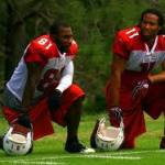 Boldin and Fitzgerald