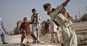 Cricket youth